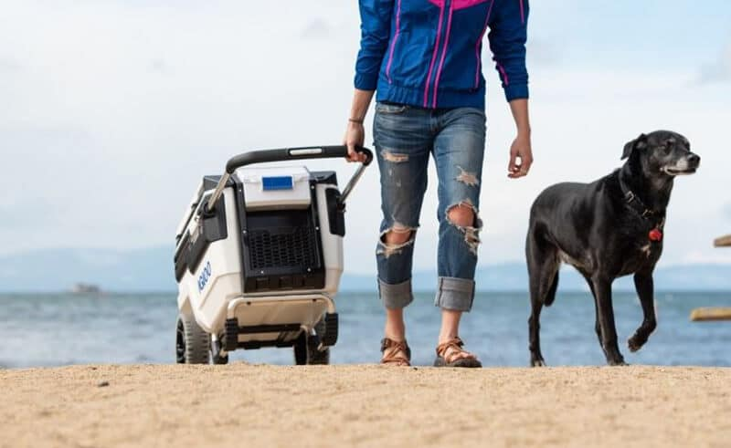 Things To Search For Top 14 Best Beach Cooler With Wheels 2020