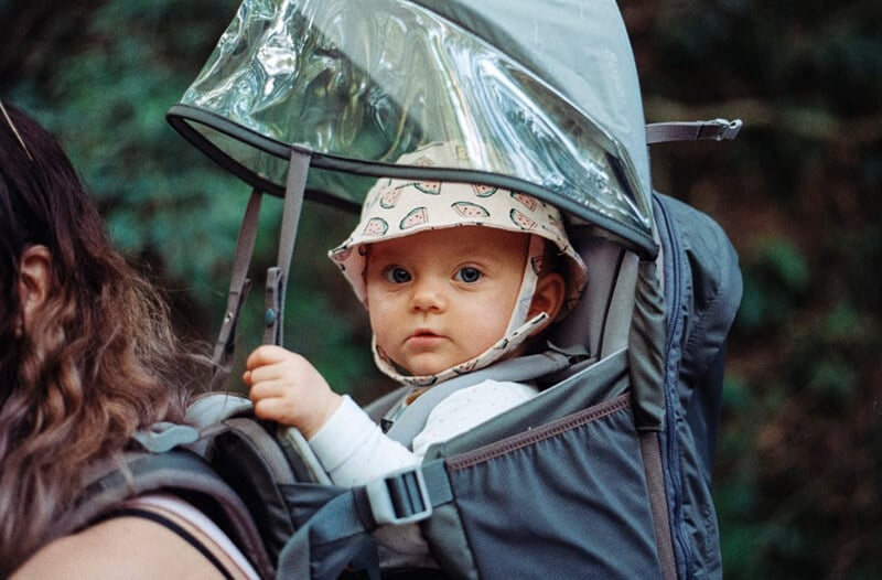 Things To Consider When Purchasing The Best Toddler Carrier For Hiking