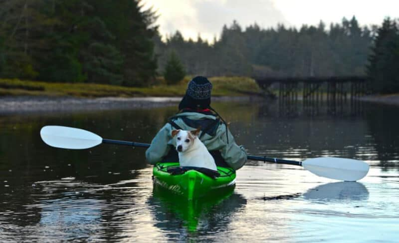 How to Select a Dog-Friendly Kayak