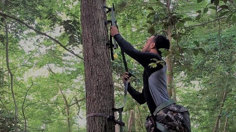 Matters to Consider When Purchasing Climbing Sticks