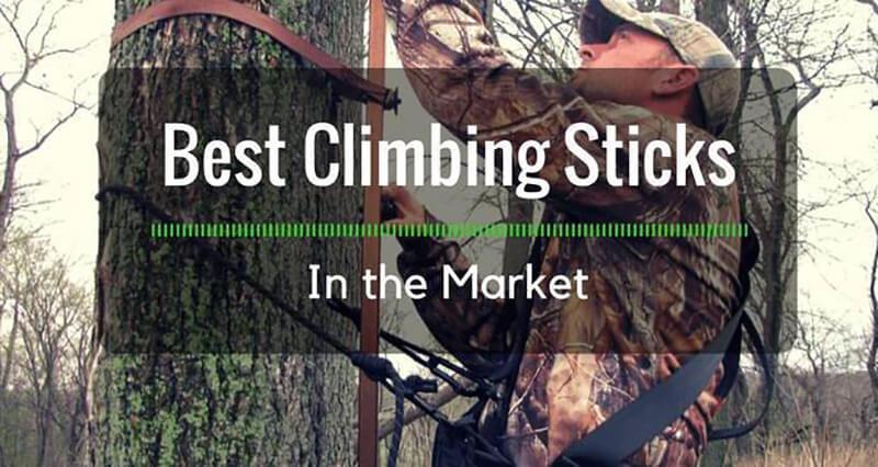 Top 9 Best Climbing Sticks Reviews 2020