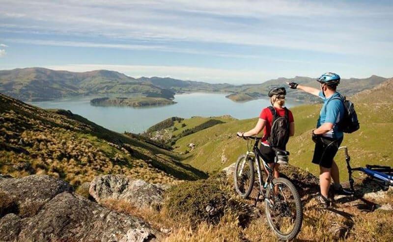 Top 11 Best Climbing Bikes Brands