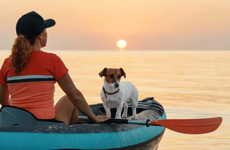 Top 11 Best Kayaks For Dogs Review 2020