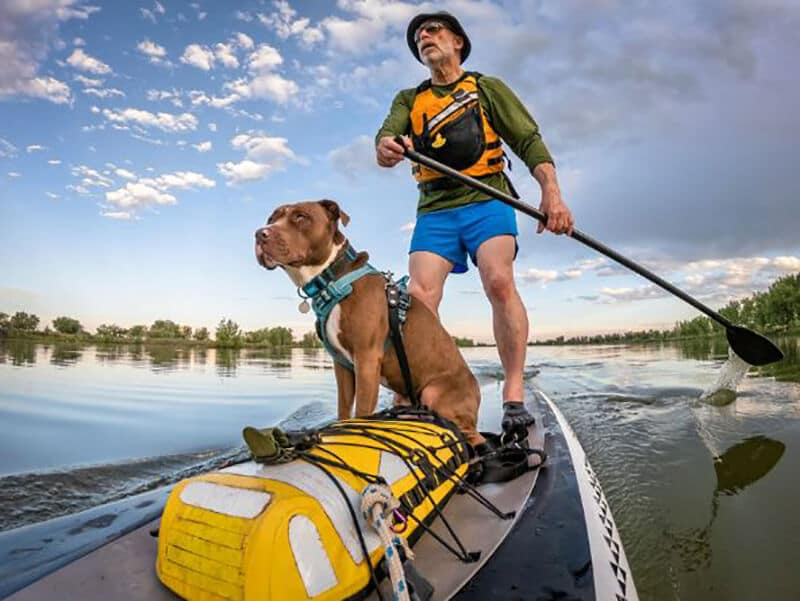 Top 11 Best Kayak For Dogs
