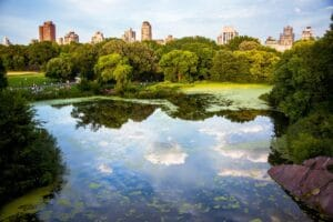 best parks and outdoor spaces in NYC