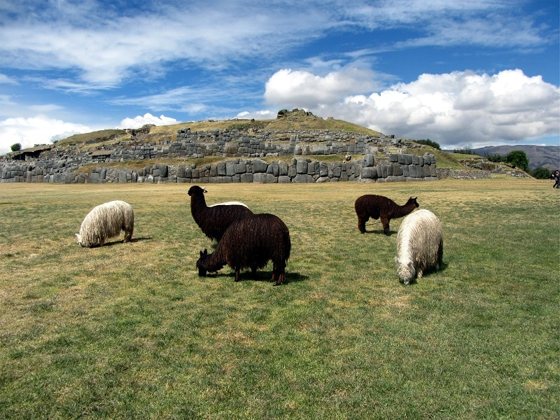 ancient Incas site Sacsayhuaman Cusco Peru