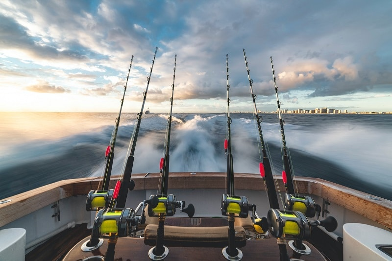 reasons why you should start charter fishing