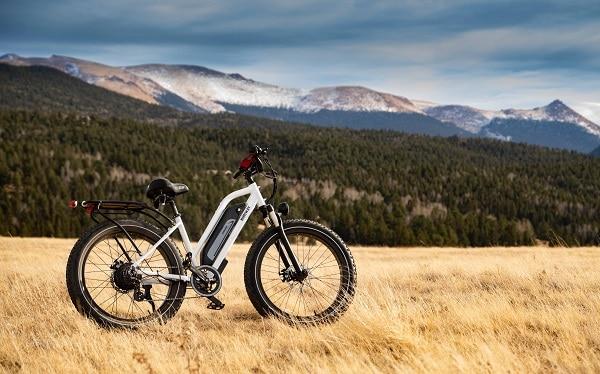 can you take an electric bike for mountain biking