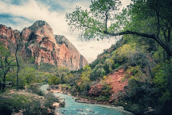 zion national park utah usa